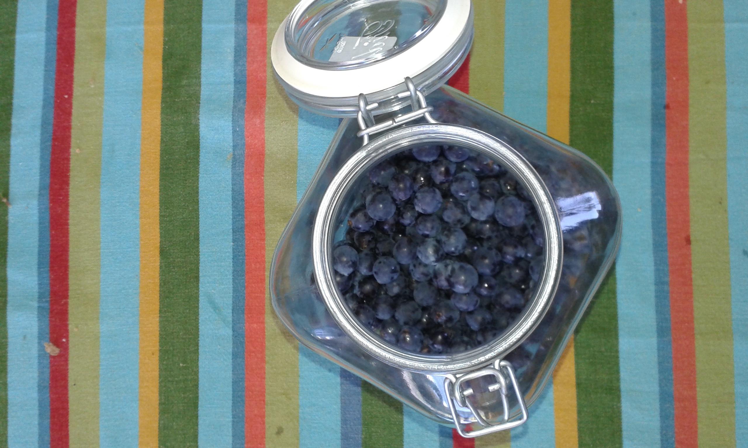 ricettevegan.org - liquore di uva fragola 2
