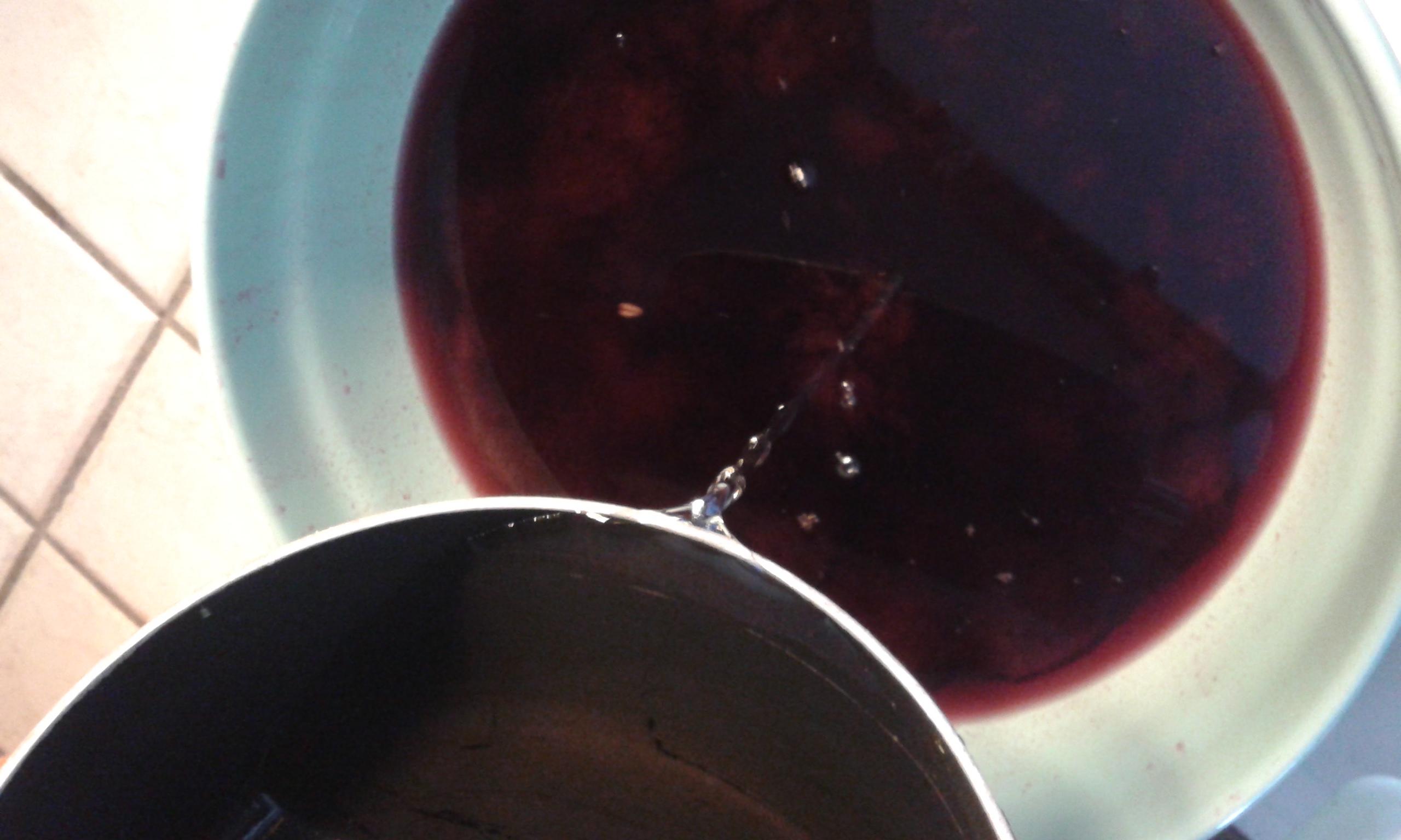 ricettevegan.org - liquore di uva fragola 6