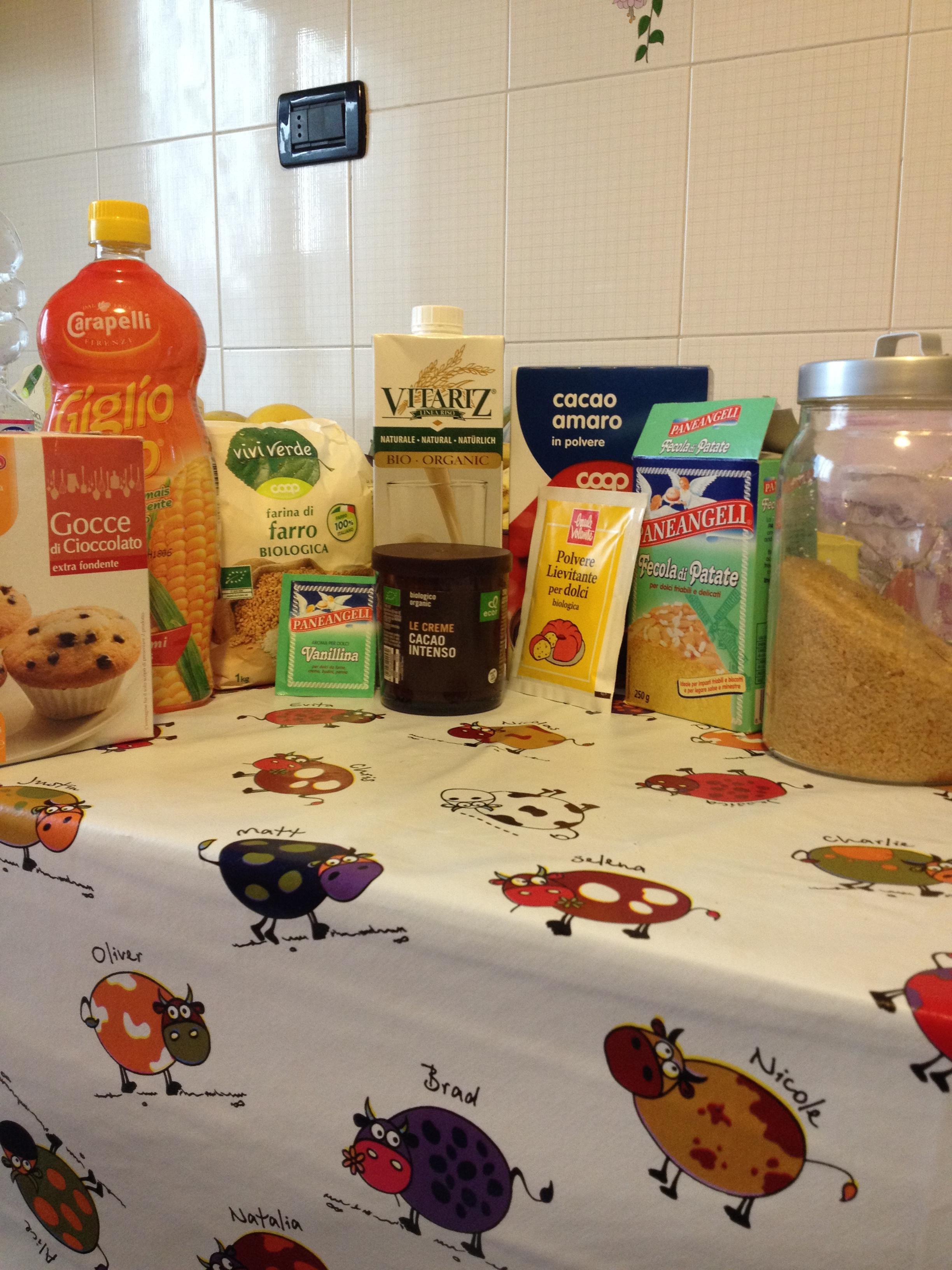 ricettevegan.org - muffin variegati cacao1